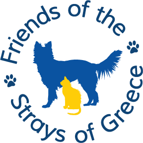 News & Events - Friends of the Strays of Greece