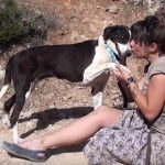 nancy dog for rehoming in Greece
